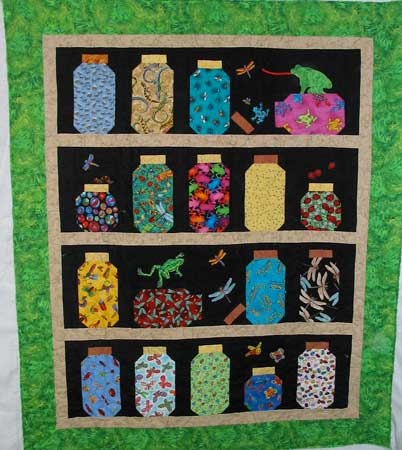 Bug Jar Quilt Boy Quilt