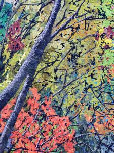 Autumn Freshet, Noriko Endo at AQS Lancaster