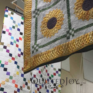 Irish Chain and Dresden Plate quilts by Liz Kodner, on display at Quilted Joy Studios May 2016