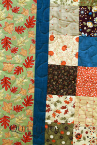 Fall Colors Quilt quilted by Quilted Joy