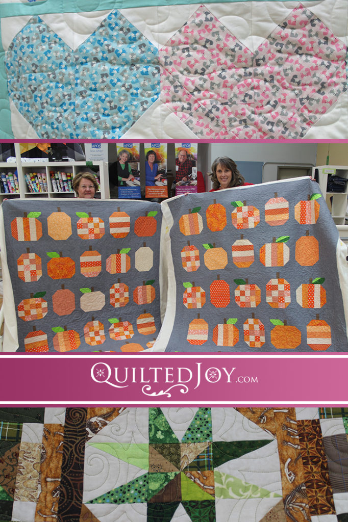 Here at Quilted Joy, we seek to inspire you to try new ways to finish your quilt. See how these five renters quilted their quilts, then come give it a try!