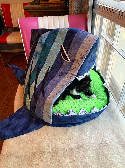 Noodles relaxes in the Shark Bait Cat Bed - Quilted Joy
