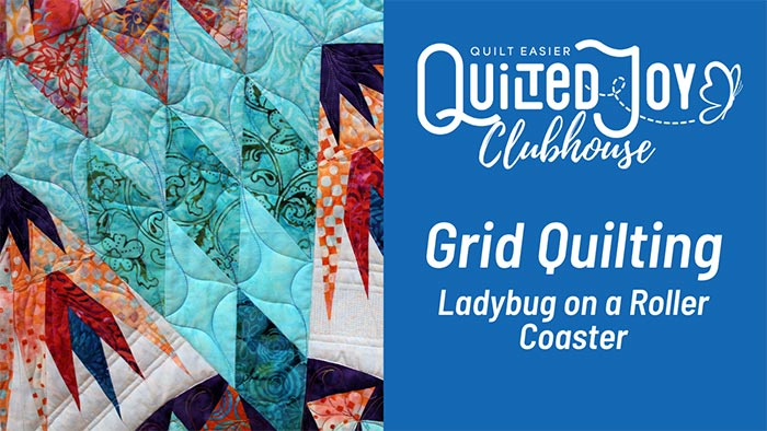"""image of a quilt with text """"Quilted Joy Clubhouse Grid Quilting Ladybug on a Roller Coaster"""""""