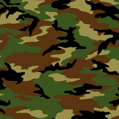 image of fabric with a camouflage print